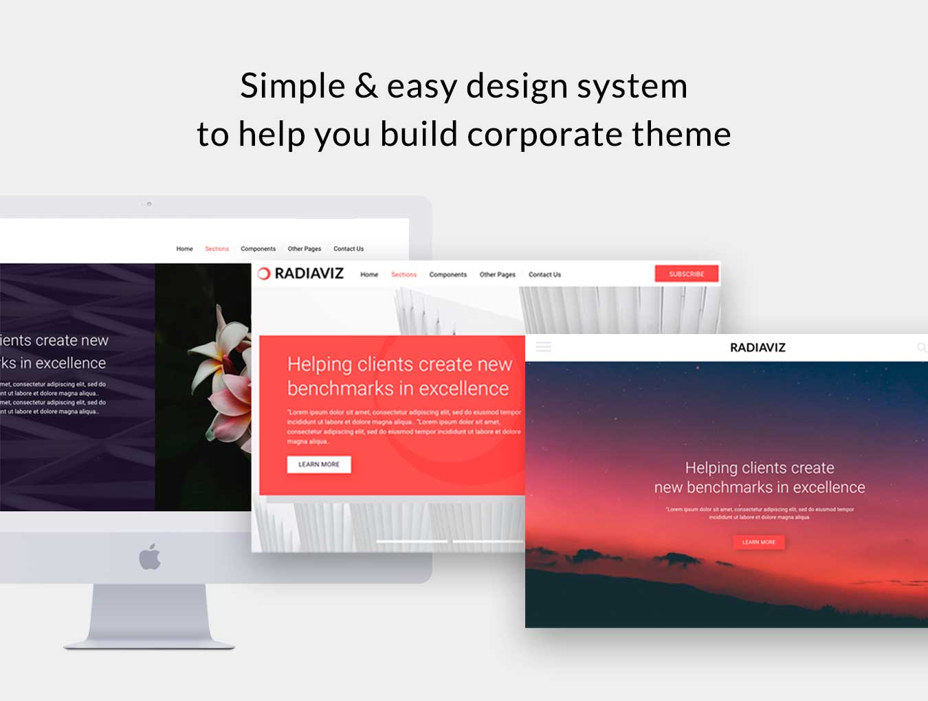 Radiaviz Corporate Sketch UI Theme